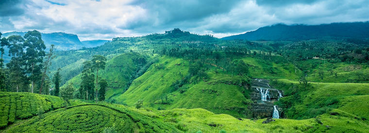 Top Nuwara Eliya Walking & Biking Tours