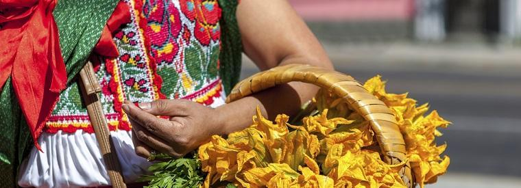 Top Oaxaca Cultural Tours