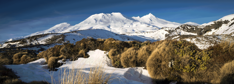 Ohakune Tours, Tickets, Activities & Things To Do