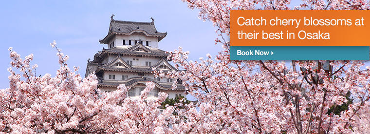Top Osaka Cultural & Theme Tours