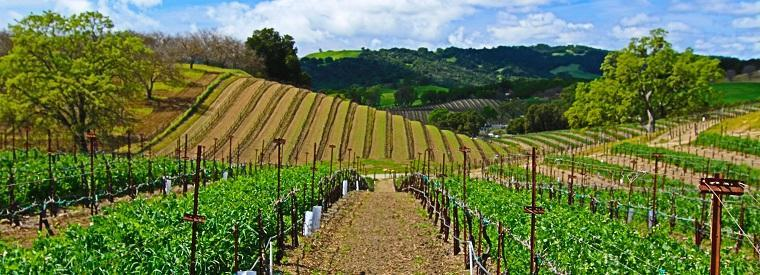 Paso Robles Self-guided Tours & Rentals