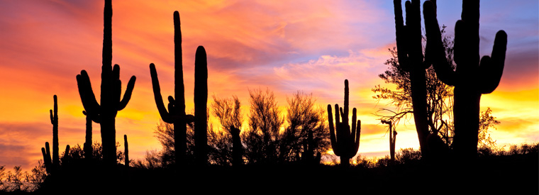 Phoenix Full-day Tours