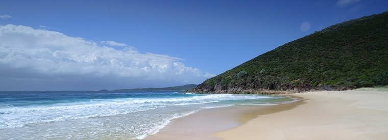 Top Port Stephens Day Trips