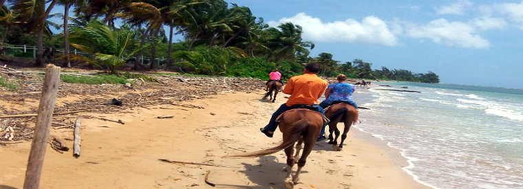 Top Puerto Rico Horseback Riding