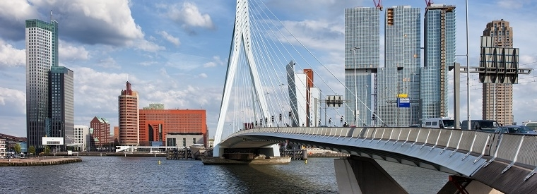 Top Rotterdam Private Sightseeing Tours