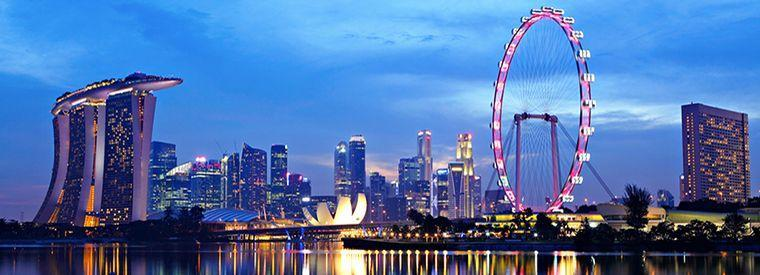 Singapore Bus & Minivan Tours