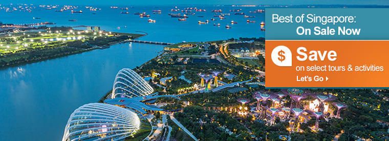 Singapore Private Sightseeing Tours