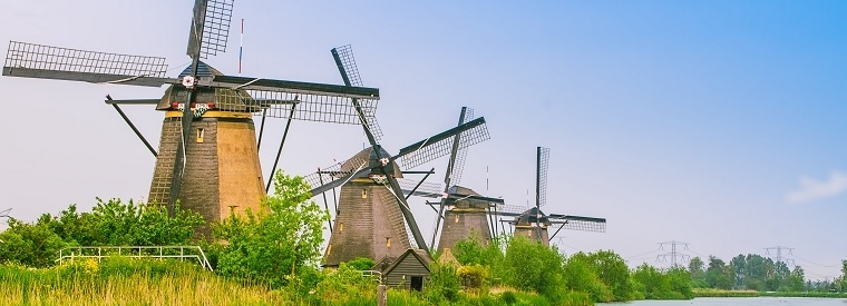 Top South Holland Hop-on Hop-off Tours