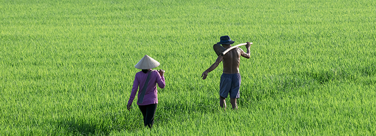 Southern Vietnam Day Trips & Excursions