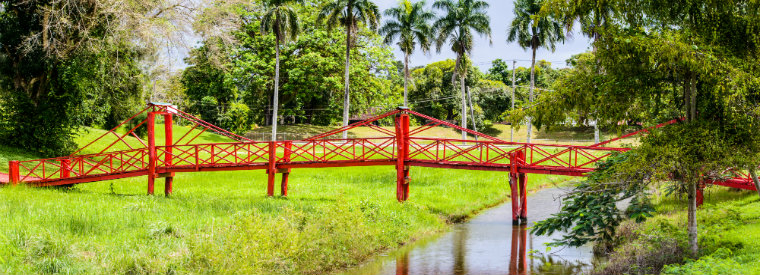 Suriname Tours, Tickets, Excursions & Things To Do