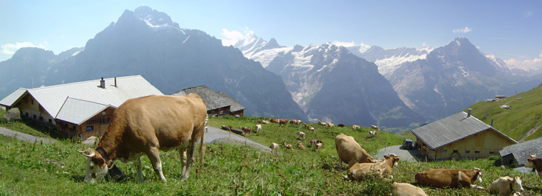 Top Switzerland Walking & Biking Tours