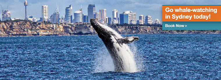 Sydney Multi-day & Extended Tours