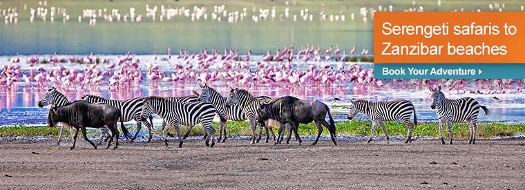 Tanzania Private Sightseeing Tours