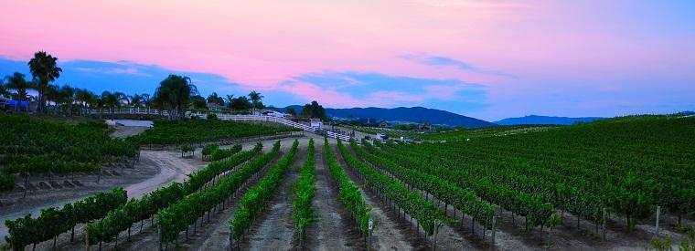 Temecula Tours, Tickets, Activities & Things To Do
