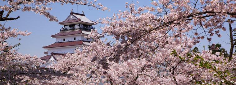 Tohoku Luxury & Special Occasions