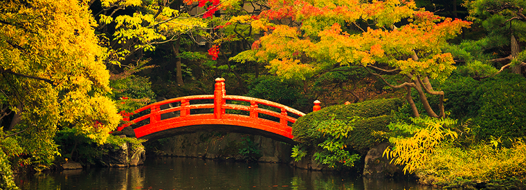 Top Tokyo Historical & Heritage Tours
