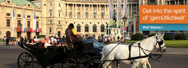 Vienna Sightseeing Tickets & Passes