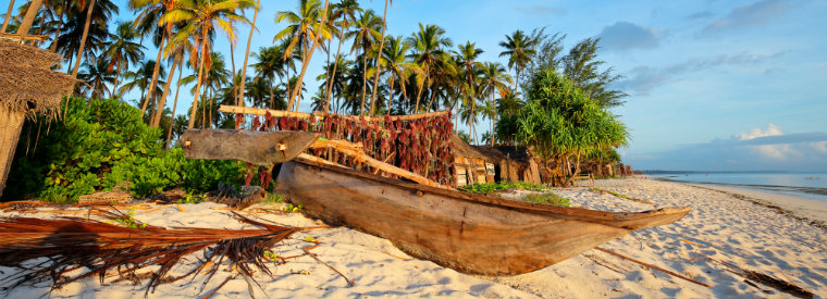 Top Zanzibar Full-day Tours