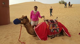 Red Dune Bashing in Dubai Including Desert Camp Experience with BBQ Dinner, SukiRaye - April 2016