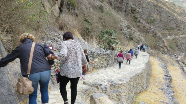 Sacred Valley of the Incas, Pisac, Awanacancha & Ollantaytambo Tour photo 29