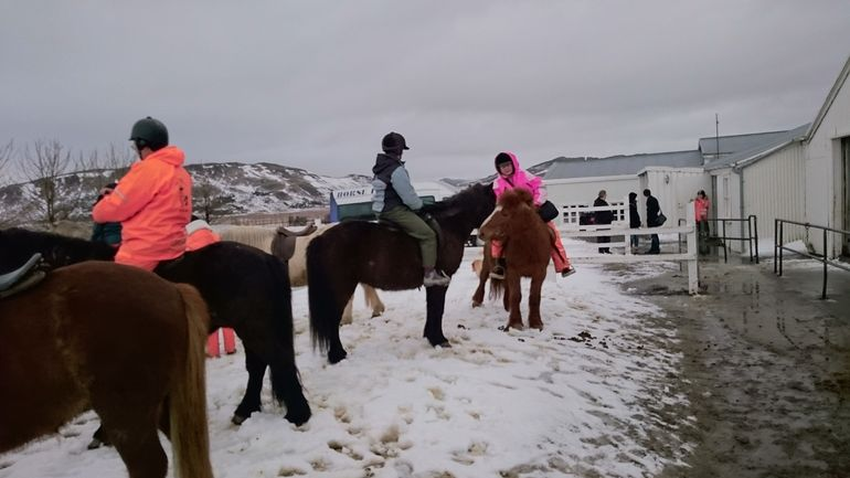 Viking Horse Riding and Golden Circle Tour from Reykjavik photo 27