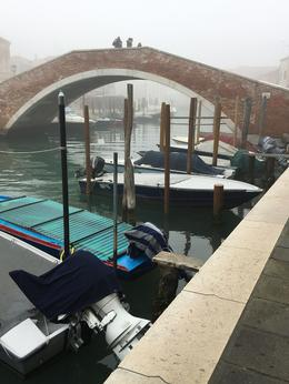 One foggy day in Murano , Vic - February 2018