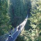 Recorrido por Vancouver con el puente colgante de Capilano, Vancouver, CANADA