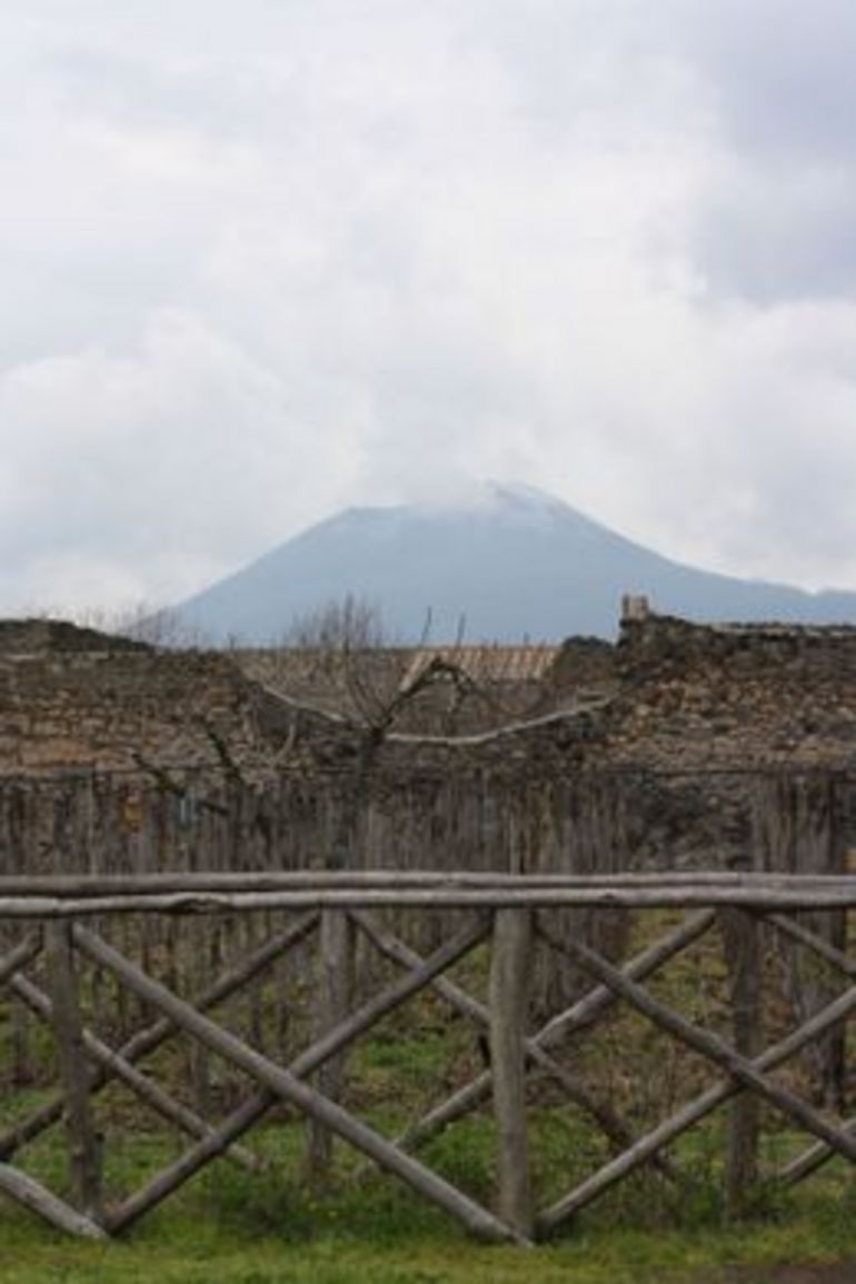Viator tour of Pompei - Rome