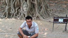 Buddha's head in a tree , Limberg B - April 2014