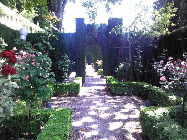 Generalife garden view - Granada