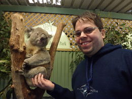 Me and the koala , carlosabreurj - July 2015