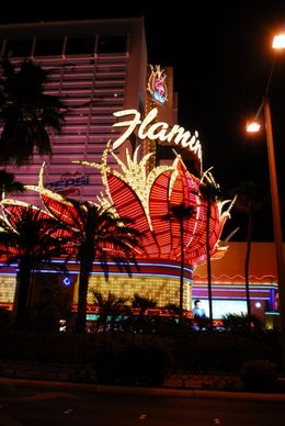 Flamingo hotel, on the Strip, great neon sign., Jeff - May 2008