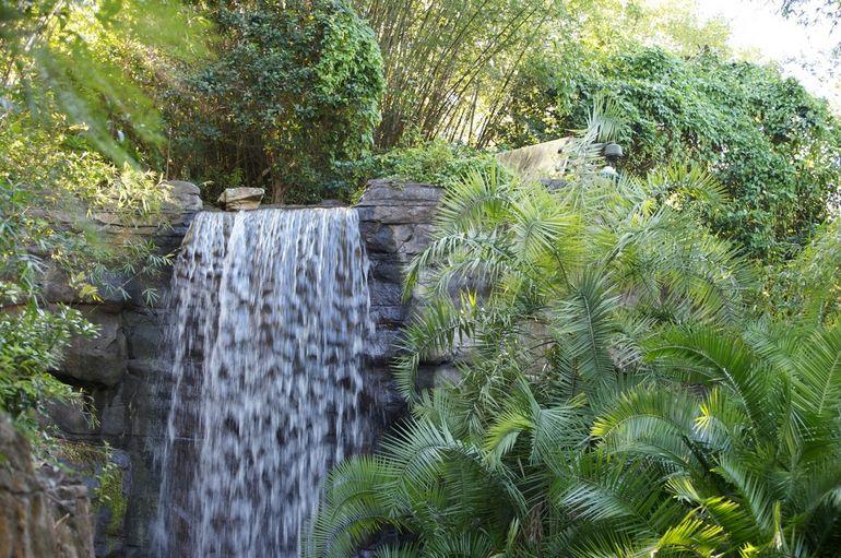 Waterfall - Orlando