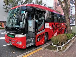 our tour bus, Mt. Fuji, so beautiful , Mary - January 2018
