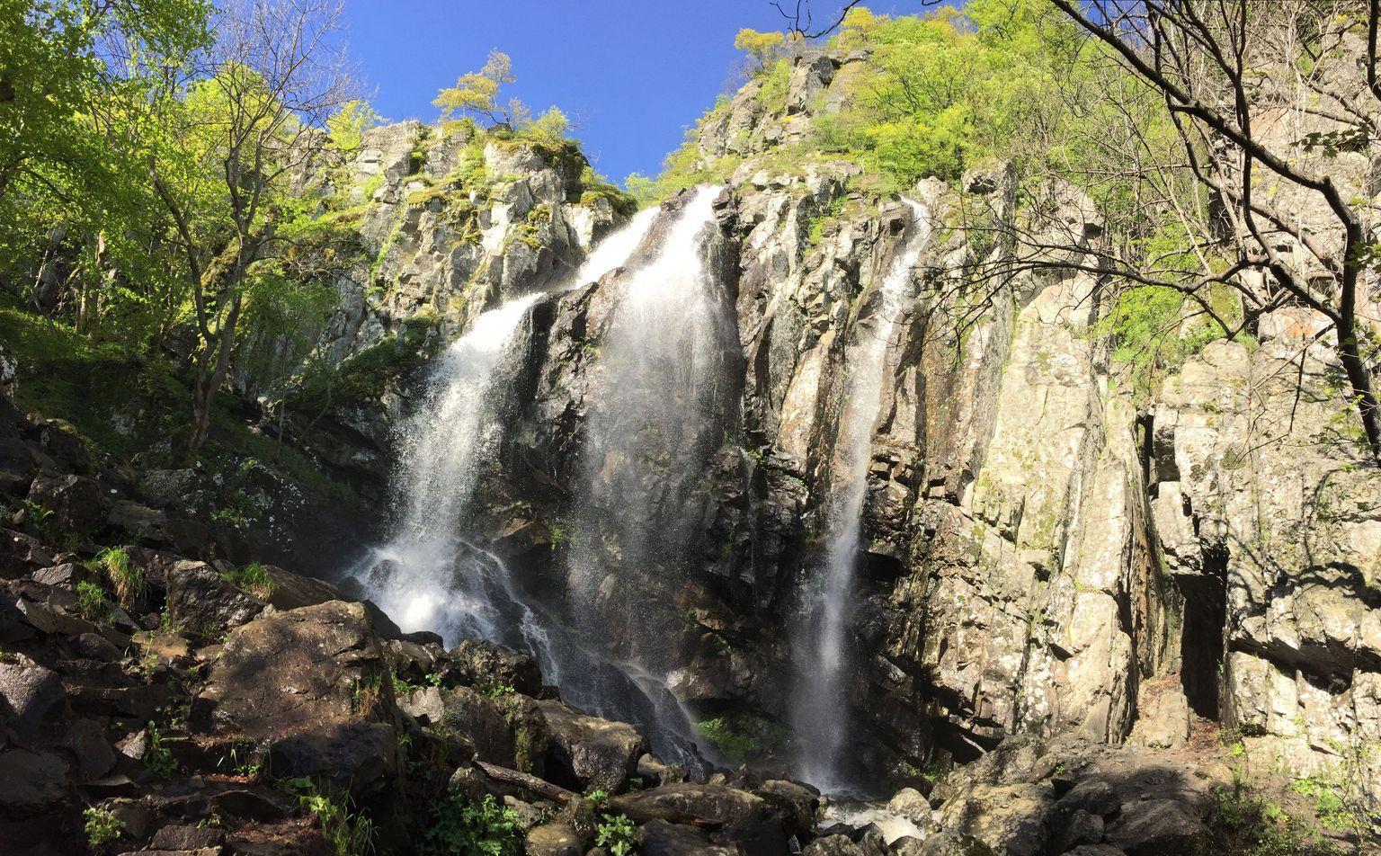 MÁS FOTOS, Mt. Vitosha and Boyana Waterfall Hiking Tour from Sofia
