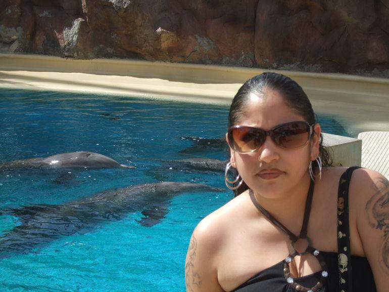 Dolphin Discovery Center - Las Vegas