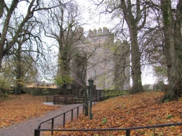 Bunratty castel, Dinko R - November 2010
