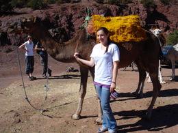 New friends outside of Marrakech, Cat - January 2012