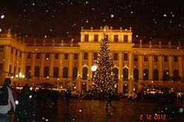 Snow at Schoenbrunn Palace , Jayendra D - December 2012