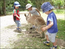 Kids getting a chance to pet and meet a kangaroo., Jeff - March 2008