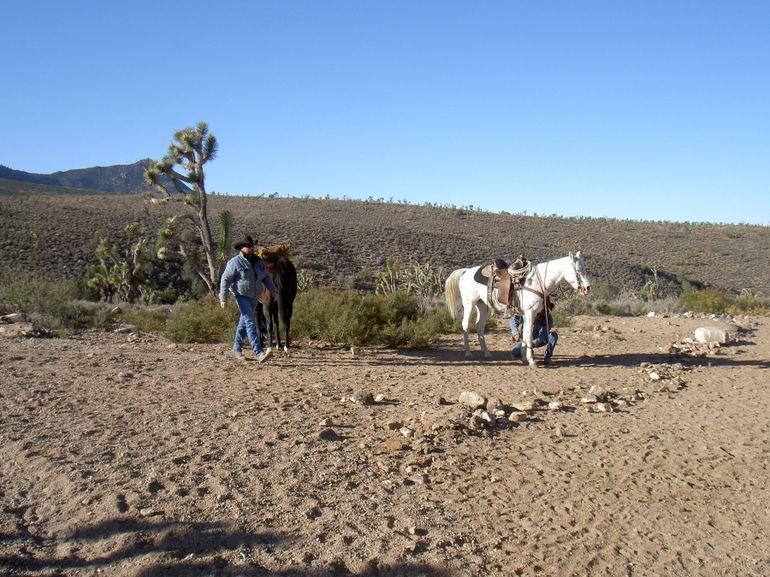 Cowboys at the Ranch - Las Vegas