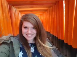 Half Day Small-Group Kyoto Cultural Tour, Caitlin R - November 2016