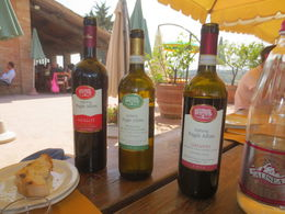 Sample of various wines served for lunch. , Nilanjan S - September 2015
