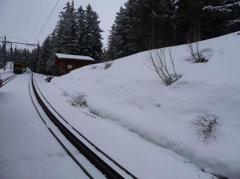 Cogwheel rail track - Zurich