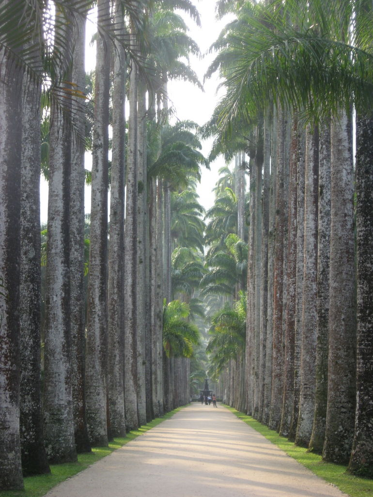 Entrance - Rio de Janeiro