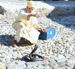 snake charmer in Tangier , kands - November 2012