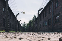 Wire fence all over the place in Auschwitz , causje - August 2015