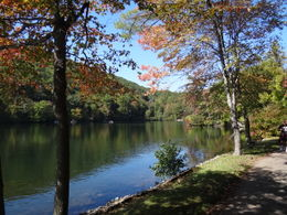 Photo Number 2 of the beautiful nature of Bear Mountain , P.J.H. S - October 2011