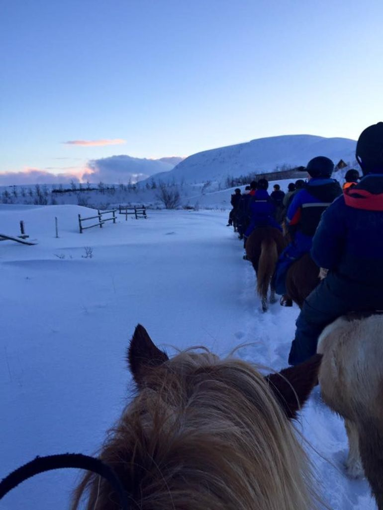 Viking Horse Riding and Golden Circle Tour from Reykjavik photo 24