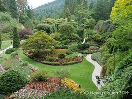Sunken Garden at Butchart Gardens , Henry C - July 2014